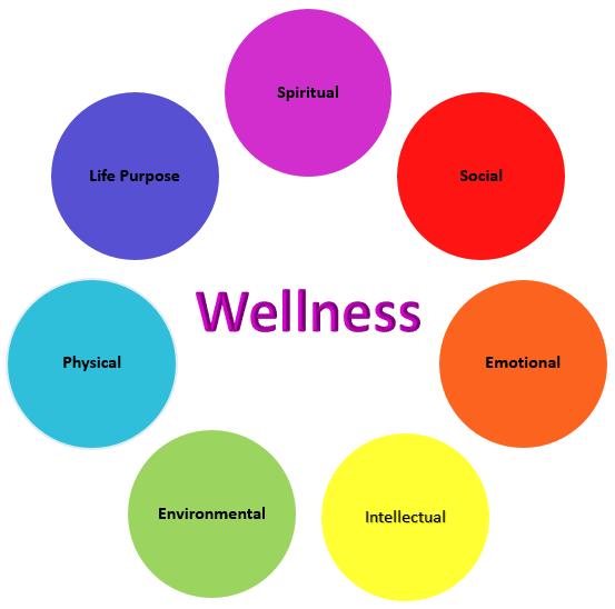 This image shows some of the common things associated with trying to achieve Wellness Services!